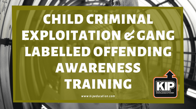 Online Training: Child Criminal Exploitation & Gang Labelled Offending Awareness
